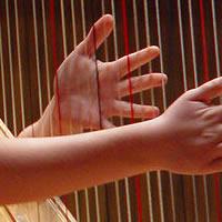 Harpist Janet Peterson - Harpist in American Fork, Utah