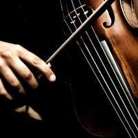Sterling Strings
