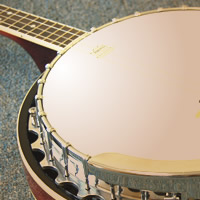 Joey Gipson - Banjo Player in Manchester, Tennessee