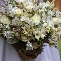 Happily Ever After Wedding & Event Planning - Wedding Planner / Event Planner in Tacoma, Washington
