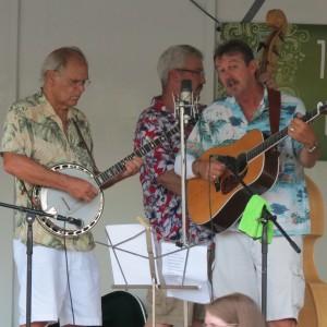 15 Strings - Bluegrass Band in Leonardtown, Maryland