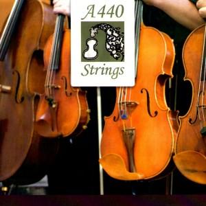 A440 Strings - String Quartet / Violinist in Fort Wayne, Indiana
