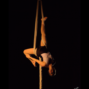 Buffalo Aerial Dance - Aerialist / Circus Entertainment in Buffalo, New York