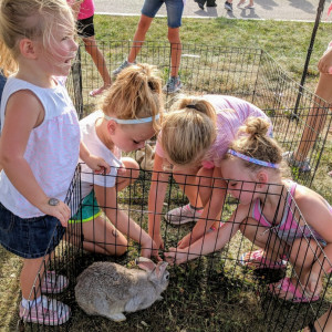 A Zoo for You - Petting Zoo / Children's Party Entertainment in St Louis, Missouri