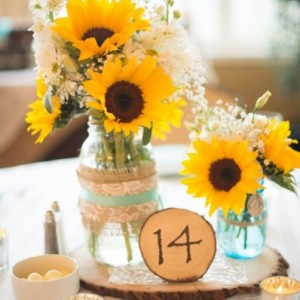 Absolute Collaborations - Wedding Planner / Event Planner in Lake George, New York