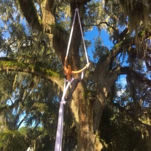 Acrobatic aerialist - Aerialist in Sarasota, Florida