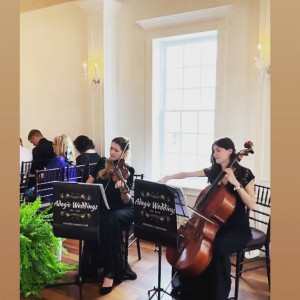 Adagio Weddings Strings - Classical Ensemble / Holiday Party Entertainment in Jacksonville, Florida