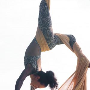 Aerial Andrea - Stilt Walker / Circus Entertainment in Boynton Beach, Florida