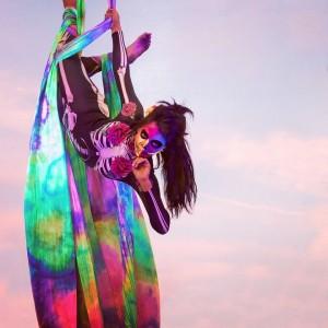 Aerial Butterflies - Aerialist / Circus Entertainment in Long Beach, California