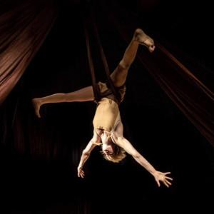 Aerial Hammock Performance - Aerialist in Los Angeles, California