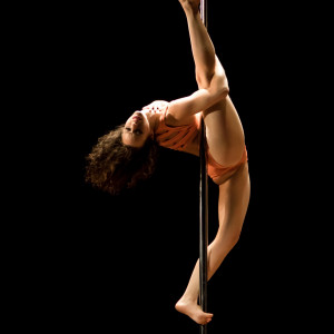 Aerial Hoop and Pole - Aerialist in New York City, New York
