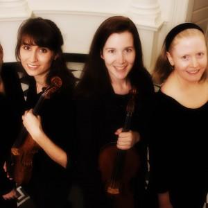Amati Chamber Music - String Quartet / Classical Duo in Atlanta, Georgia