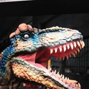 Dinosaur Trail - Educational Entertainment in Liberty, New York