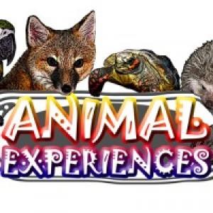 Animal Experiences - Animal Entertainment in Union Mills, North Carolina