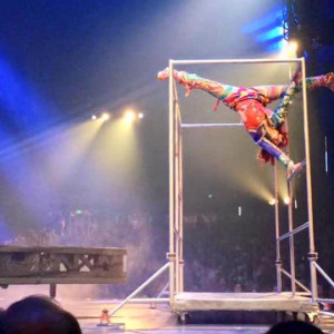 Professional Acrobats: Parkour, Freerunning, Circus, Dance, Pole, etc.