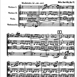 Appolo String Quartet - String Quartet / Classical Ensemble in Oklahoma City, Oklahoma