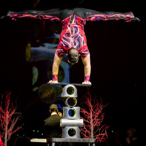 Arestovs Family Variety Circus Show - Circus Entertainment in Mississauga, Ontario