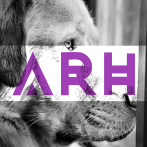 ARH Design & Photography - Photographer in Pflugerville, Texas
