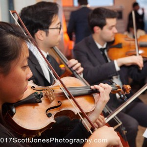 Aristo Strings NYC - String Quartet in New York City, New York
