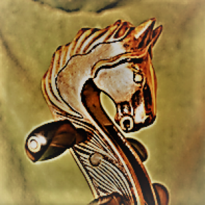 Atoka String Quartet - String Quartet / Violinist in Middleburg, Virginia