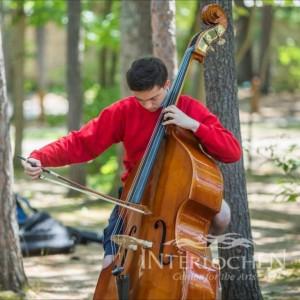 Attila Kiss - Bassist / Classical Ensemble in Lynnwood, Washington