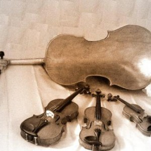Avans Music - Classical Ensemble / Holiday Party Entertainment in Roanoke, Virginia