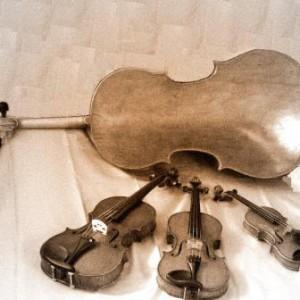 Avans Music - Classical Ensemble / Educational Entertainment in Roanoke, Virginia