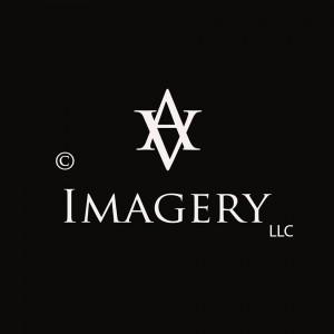 Avid Visual Imagery LLC - Photographer in Manhattan, Kansas