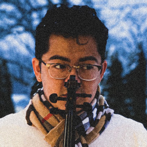 BadBrenden's Violin and Harp - Violinist / Strolling Violinist in Crown Point, Indiana