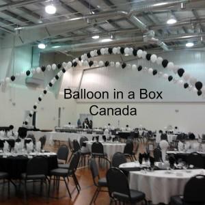 Balloon in a Box Canada