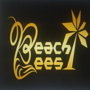 Beach Bees - Waitstaff / Bartender in Vero Beach, Florida