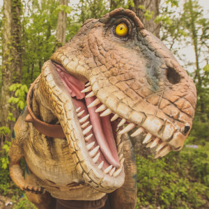 Beaux the Tyrannosaurus Rex - Costumed Character / Children's Party Entertainment in Evansville, Indiana
