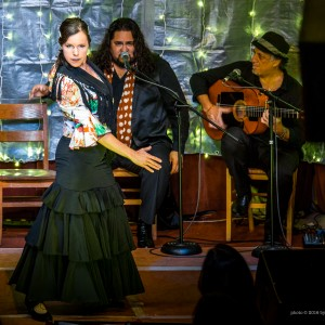 Berdolé Flamenco Production - Flamenco Group / Flamenco Dancer in Atlanta, Georgia