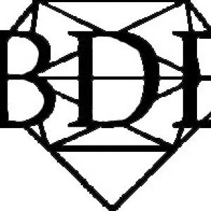 Black Diamond Entertainment - Event Planner in Dallas, Texas