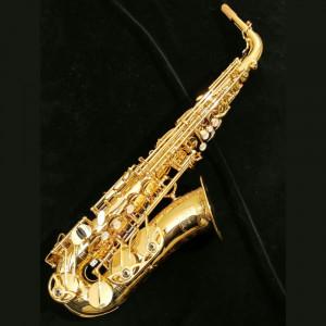 Blehsax - Saxophone Player in Niagara on the Lake, Ontario