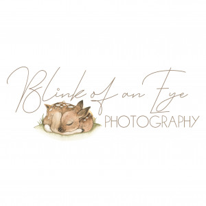Blink of an Eye Photography - Portrait Photographer in Milton, Ontario