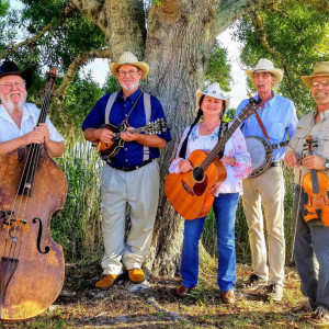 Blue Cypress Bluegrass -Live Traditional Bluegrass & Old-time Country - Bluegrass Band in Vero Beach, Florida
