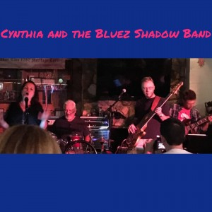 Bluez Shadow Band - Classic Rock Band in Tustin, California