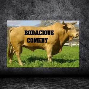 Bodacious Comedy - Comedy Show in Naples, Florida
