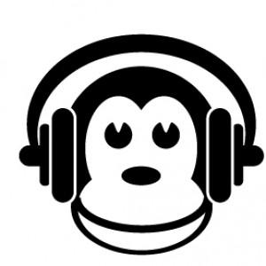 Brain Monkeys Media - DJ / Karaoke DJ in Madison, Wisconsin