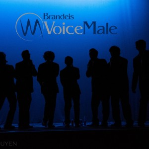 Brandeis VoiceMale - A Cappella Group in Waltham, Massachusetts