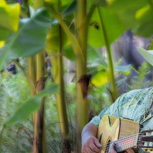 Brazilian Dreams - Acoustic Band / Caribbean/Island Music in Seattle, Washington