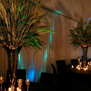 Brown's Creative Events - Party Decor in Yemassee, South Carolina