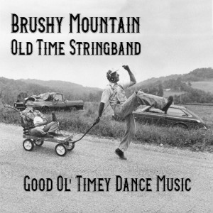 Brushy Mountain Old-Time String Band
