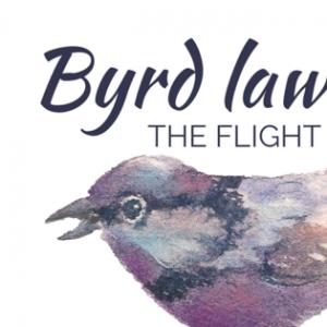 Byrd Law - Jazz Band in Lexington, Kentucky