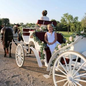 Cavalier Carriage - Horse Drawn Carriage / Limo Service Company in Ben Wheeler, Texas