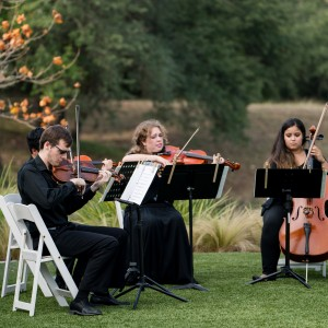 Cello Vida - Cellist in San Antonio, Texas