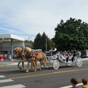 Chafin Farm Carriages - Horse Drawn Carriage in Sweet Home, Oregon