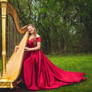 Chanah Ambuter, Harpist - Harpist / Celtic Music in West Bloomfield, Michigan