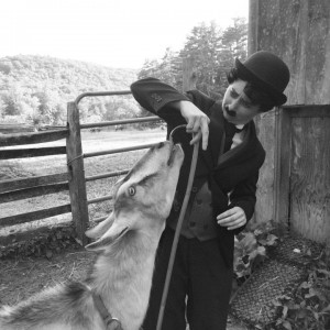 North Andover's Charlie Chaplin - Charlie Chaplin Impersonator in North Andover, Massachusetts